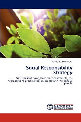 Social Responsibility Strategy (Paperback)