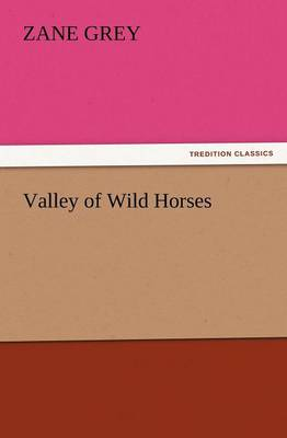 Valley of Wild Horses (Paperback)