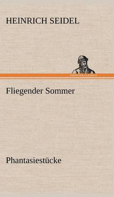 Fliegender Sommer (Hardback)