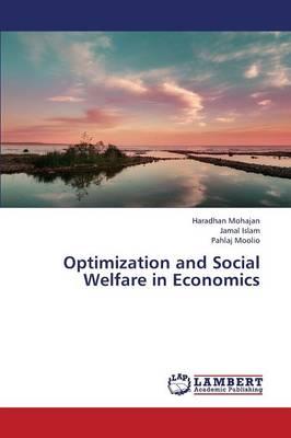 Optimization and Social Welfare in Economics (Paperback)
