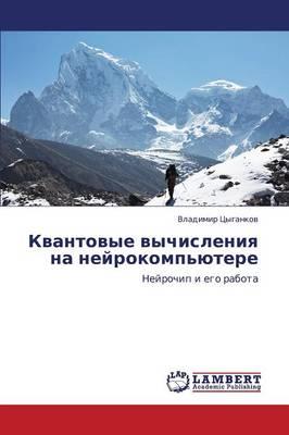 Kvantovye Vychisleniya Na Neyrokomp'yutere (Paperback)