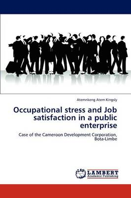 Occupational Stress and Job Satisfaction in a Public Enterprise (Paperback)