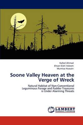 Soone Valley Heaven at the Verge of Wreck (Paperback)