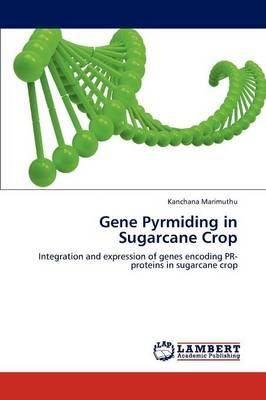 Gene Pyrmiding in Sugarcane Crop (Paperback)