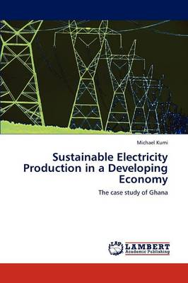 Sustainable Electricity Production in a Developing Economy (Paperback)