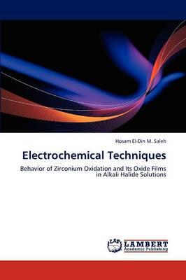 Electrochemical Techniques (Paperback)
