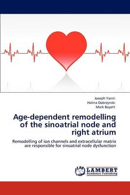 Age-Dependent Remodelling of the Sinoatrial Node and Right Atrium (Paperback)
