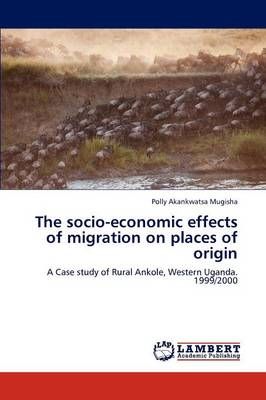 The Socio-Economic Effects of Migration on Places of Origin (Paperback)