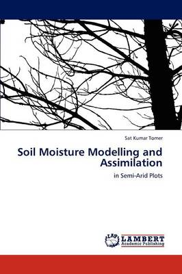 Soil Moisture Modelling and Assimilation (Paperback)