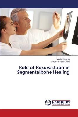 Role of Rosuvastatin in Segmentalbone Healing (Paperback)