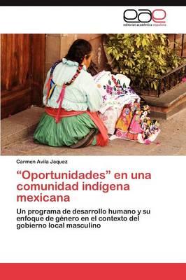 Oportunidades En Una Comunidad Indigena Mexicana (Paperback)