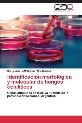 Identificacion Morfologica y Molecular de Hongos Celuliticos (Paperback)