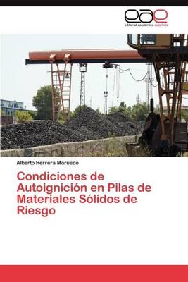 Condiciones de Autoignicion En Pilas de Materiales Solidos de Riesgo (Paperback)