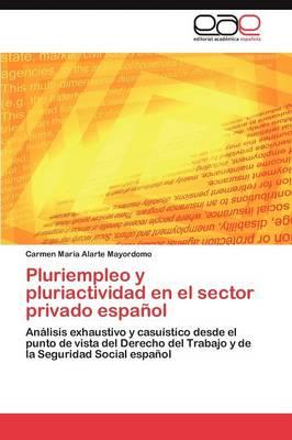 Pluriempleo y Pluriactividad En El Sector Privado Espanol (Paperback)