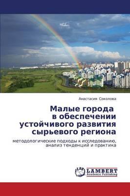 Malye Goroda V Obespechenii Ustoychivogo Razvitiya Syr'evogo Regiona (Paperback)