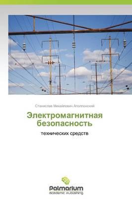 Elektromagnitnaya Bezopasnost' (Paperback)