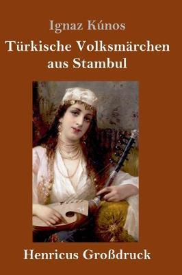 Turkische Volksmarchen aus Stambul (Grossdruck) (Hardback)