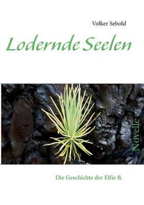 Lodernde Seelen (Paperback)