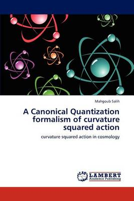 A Canonical Quantization Formalism of Curvature Squared Action (Paperback)