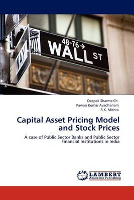 Capital Asset Pricing Model and Stock Prices (Paperback)