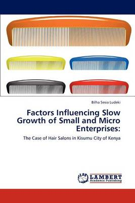 Factors Influencing Slow Growth of Small and Micro Enterprises (Paperback)