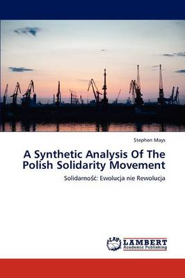 A Synthetic Analysis of the Polish Solidarity Movement (Paperback)