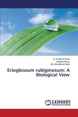 Erioglossum Rubiginosum: A Biological View (Paperback)