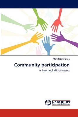 Community Participation (Paperback)