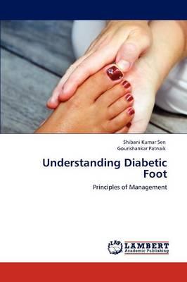 Understanding Diabetic Foot (Paperback)