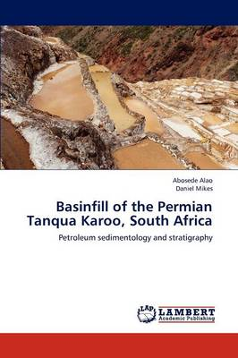Basinfill of the Permian Tanqua Karoo, South Africa (Paperback)