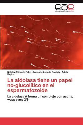 La Aldolasa Tiene Un Papel No-Glucolitico En El Espermatozoide (Paperback)