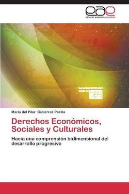 Derechos Economicos, Sociales y Culturales (Paperback)