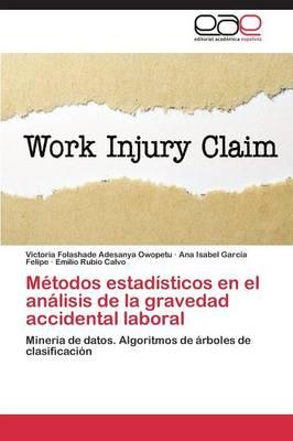Metodos Estadisticos En El Analisis de La Gravedad Accidental Laboral (Paperback)