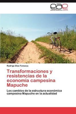 Transformaciones y Resistencias de La Economia Campesina Mapuche (Paperback)