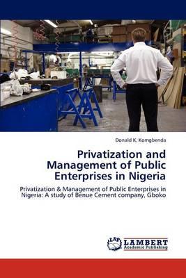 Privatization and Management of Public Enterprises in Nigeria (Paperback)
