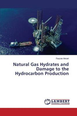 Natural Gas Hydrates and Damage to the Hydrocarbon Production (Paperback)