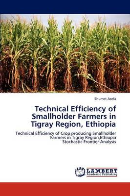 Technical Efficiency of Smallholder Farmers in Tigray Region, Ethiopia (Paperback)