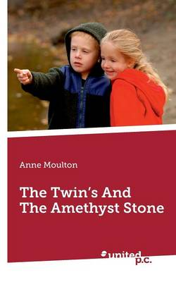 The Twins and the Amethyst Stone (Paperback)