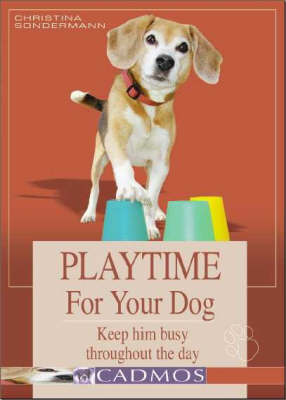 Playtime for Your Dog: Keep Him Busy Throughout the Day (Hardback)