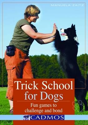 Trick School for Dogs: Fun Games to Challenge and Bond (Paperback)