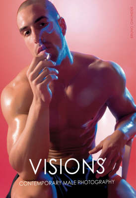 Visions, Contemporary Male Photography: This is a Men's World - Today's View (Hardback)