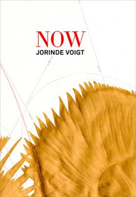 Jorinde Voigt: Now (Paperback)