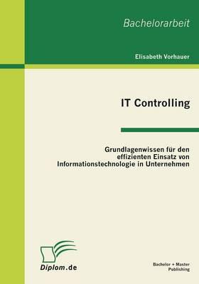 It Controlling: Grundlagenwissen Fur Den Effizienten Einsatz Von Informationstechnologie in Unternehmen (Paperback)