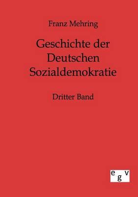 Geschichte Der Deutschen Sozialdemokratie (Paperback)