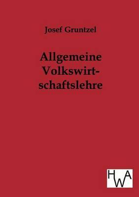 Allgemeine Volkswirtschaftslehre (Paperback)