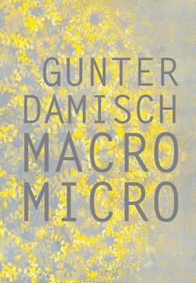 Gunter Damisch: Macro Micro (Hardback)