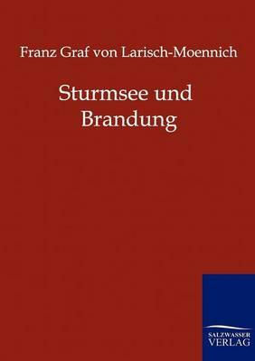 Sturmsee Und Brandung (Paperback)