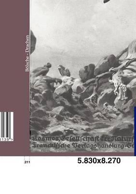 Drachen (Paperback)