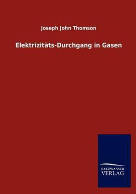 Elektrizit Ts-Durchgang in Gasen (Paperback)