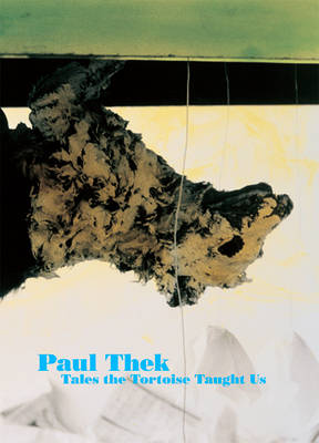 Paul Thek: What the Tortoise Taught Us (Paperback)